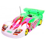 EDM P0321  1:8 GT Body, multicolor (Green)